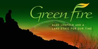 Green Fire movie image