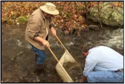 Two men using a net to collect insect samples from the creek.